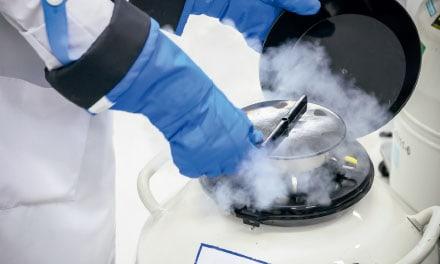 Criopreservação dos óvulos